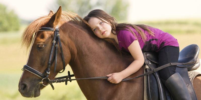 Что такое иппотерапия? Лошадь как панацея для человека