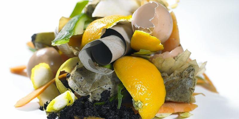 Органические отходы в строительстве: да или нет