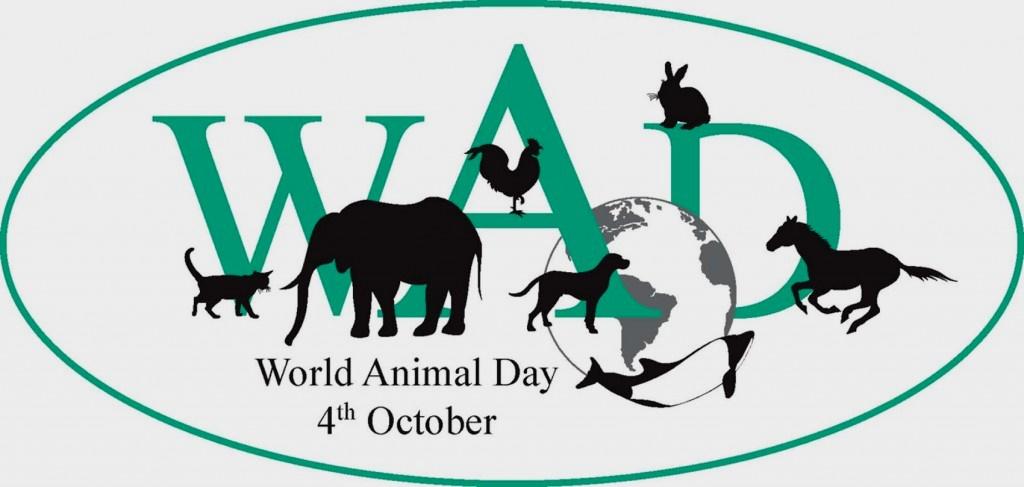 4 октября — День защиты животных
