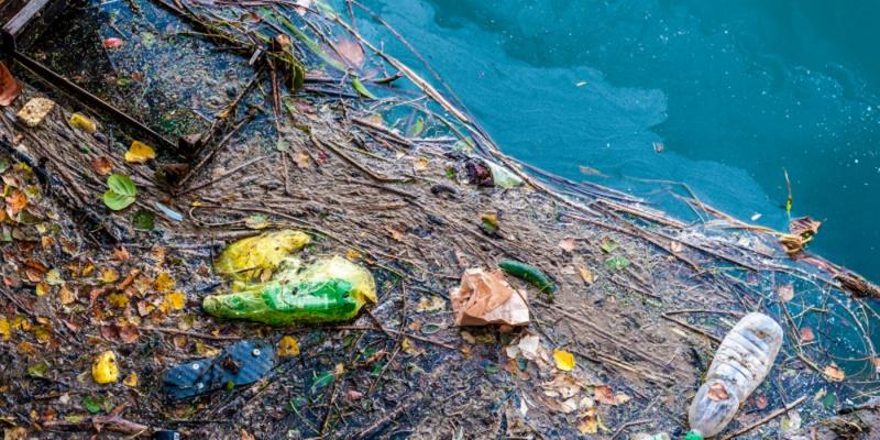 Пластик и экология: чья возьмет?