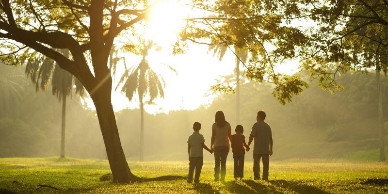 Что брать с собой для прогулки в парке