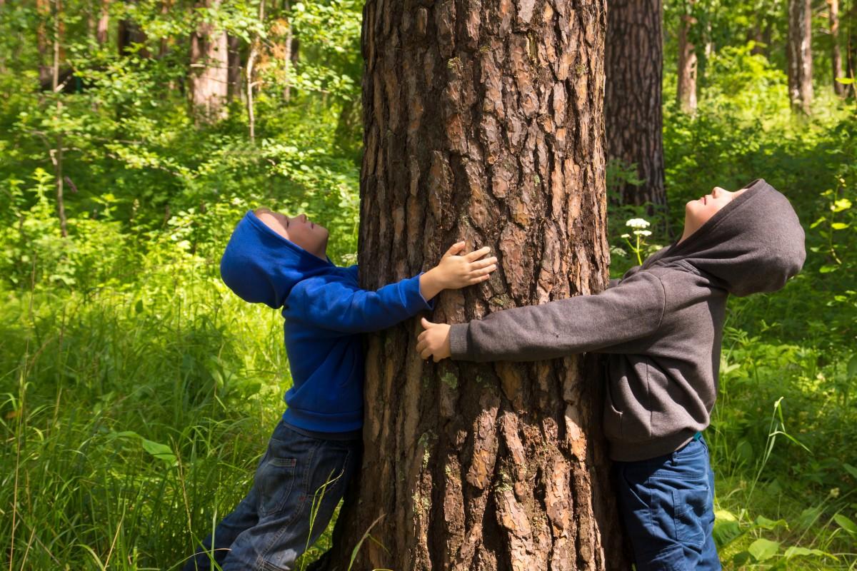 Роль природных охраняемых территорий
